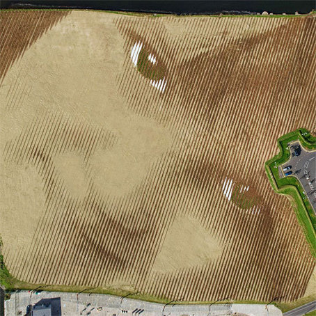 The portrait that can only be seen from a plane | Street art | Creative Bloq | World of Street & Outdoor Arts | Scoop.it