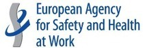 (CS, EL, EN, FI, HU, LT, LV, MT, SK) (PDF) E-fact 62 - Safe maintenance: working with contractors and subcontractors | EU-OSHA | glossary | Scoop.it