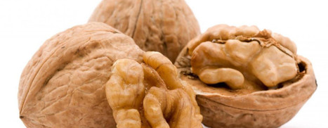 FDA Says Walnuts Are Drugs – Your News Wire | Drugs, Society, Human Rights & Justice | Scoop.it