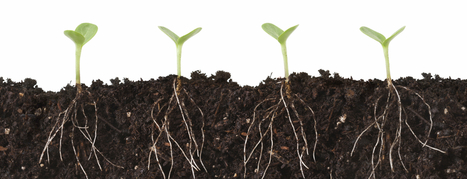 Explained: The Difference Between Growth Hacking and Marketing | Education | Scoop.it