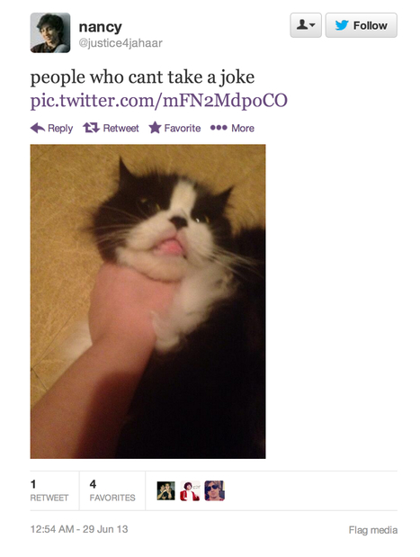 Cat Abuse Doc | Twitter | Scoop.it