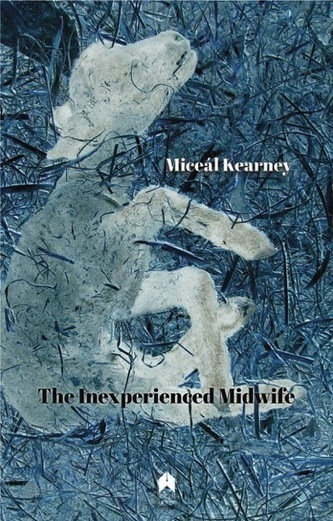 The Inexperienced Midwife by Miceál Kearney-Review by Anne Marie Kennedy | The Irish Literary Times | Scoop.it