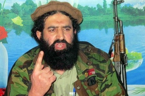 Pakistani Taliban Leaders Defect to Islamic State | Lawless land | Scoop.it