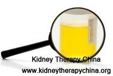 What Natural Herbs Work For Protein 2+ In FSGS   Kidney Disease   Scoop.it