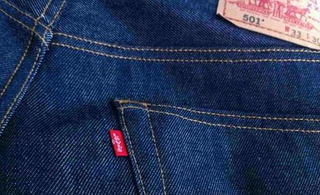 The bacteria that could make your blue jeans greener | sustainability and resilience | Scoop.it