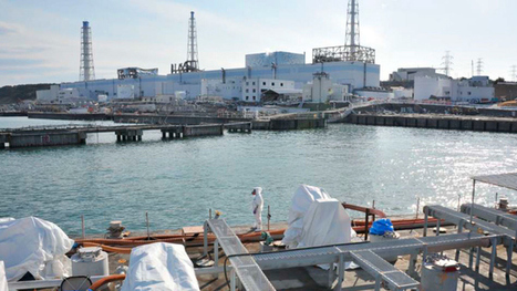 Radiation levels in #Fukushima bay highest since measurements began - reports :(   Unthinking respect for authority is the greatest enemy of truth.   Scoop.it