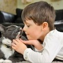 Billy The Stray Cat Changes The Life Of An Autistic Boy With The Healing Power of Love | Happy Cat Stories | Scoop.it