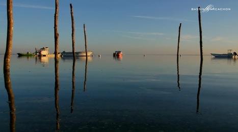 Bassin, «Les vraies vacances, c'est ici !» tout au long de l'année – découvrez le Bassin d'Arcachon en automne / hiver avec le SIBA | SIBA La Revue de Presse | Scoop.it