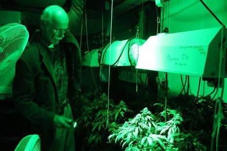 New medical marijuana bills would allow edibles, dispensaries in Michigan | Beckley News : Cannabis - Marijuana | Scoop.it