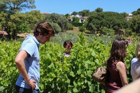 Compte-rendu du #Vinocamp Provence - 23/24 mai 2014 - Vinocamp France | Le Vin Parfait | Scoop.it