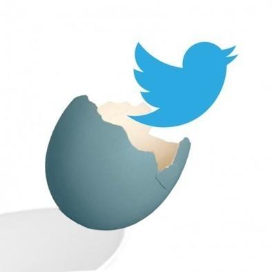 On a retrouvé les premiers Français inscrits sur Twitter | Toulouse networks | Scoop.it
