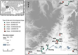 PLOS ONE: Bioarchaeological Insights into the Process of Domestication of Grapevine (Vitis vinifera L.) during Roman Times in Southern France | Plant Gene Seeker -PGS | Scoop.it