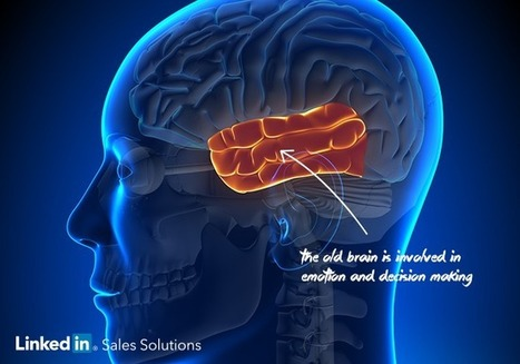 """Selling to the Real Buyer: The """"Old Brain"""" 