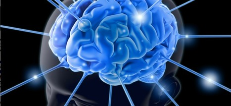 How To Use Neuroscience For Insight Into The Social Customer   Barefoot Leadership   Scoop.it