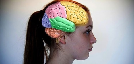 Emotional brains 'physically different' to rational ones | Brain Imaging and Neuroscience: The Good, The Bad, & The Ugly | Scoop.it