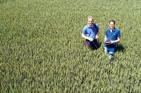 Trois entreprises belges qui révolutionnent l'agriculture | InfoPME | Scoop.it