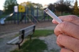 Trial Smoking Ban in Parc de Montsouris in Paris | I love cigarettes | Scoop.it