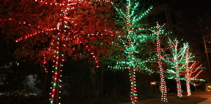 Sparklighting- Christmas Light Installatio | Led Lighting Services In Houston | Scoop.it