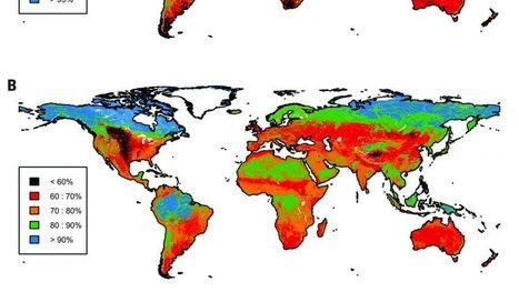 Les écosystèmes de la planète menacés par la perte de biodiversité | EntomoNews | Scoop.it
