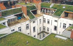 Los techos verdes ahorran energía. Nuevos resultados.   Infraestructura Sostenible   Scoop.it