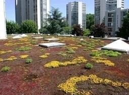 Toitures végétalisées pour mieux isoler - Média idealmag.org   Résilience climatique des villes   Scoop.it