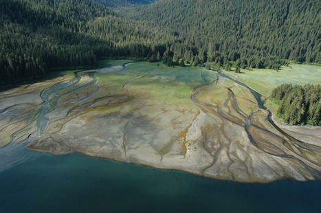 Great Photos of Alaska's Coastline Taken For the Mapping Project | Chris' Regional Geography | Scoop.it