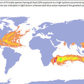Maps of Earth Showing Where Severe Weather is Most Likely to Kill | Year 9 Geography - Sustainable Biomes | Scoop.it