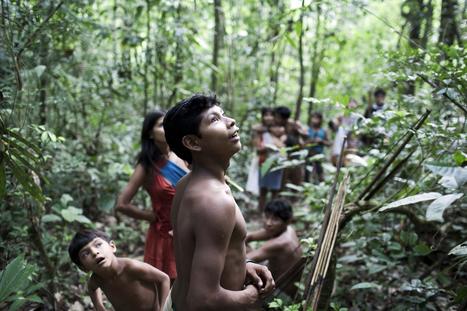 Le Brésil se décide à secourir une tribu indienne menacée | Economie Responsable et Consommation Collaborative | Scoop.it