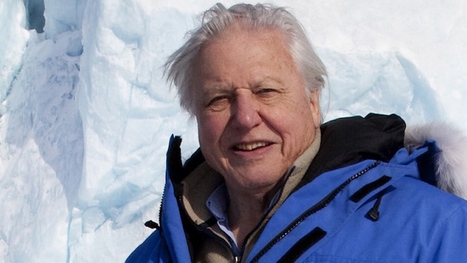Attenborough: Humans 'Deny' Climate Threat | in plain sight | Scoop.it