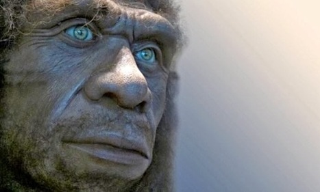 The Archaeology News Network: The Neanderthals' genetic legacy | Social Studies Infromation | Scoop.it