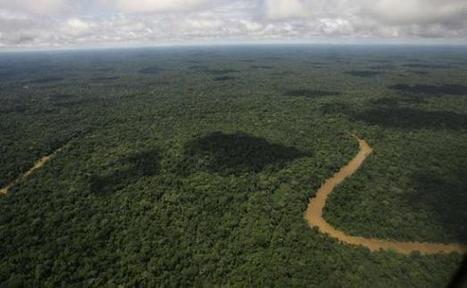 Equateur: Le pétrole l'emporte sur la forêt   Le recours aux forêts   Scoop.it