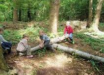 Forest Research - Evaluation of Forest School: Phase 2 - England | Education | Scoop.it