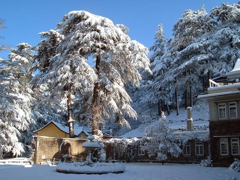 Shimla - A Serene Wonderland With Amazing Wonders | Travel and Tourism in Jaipur - The Pink City | Scoop.it