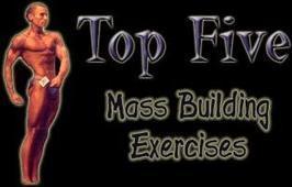 Bodybuilding.com - Top 5 Mass Building Exercises! | body building | Scoop.it