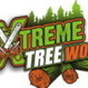 Pruning and Care of Trees