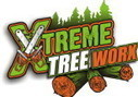 Stump Grinding & Tree Removal Service Dallas   Xtreme Tree Worx :   Pruning and Care of Trees   Scoop.it