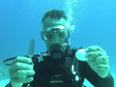 Scuba Diving Egg Trick | All about water, the oceans, environmental issues | Scoop.it