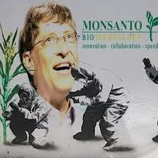 Bill Gates, Monsanto and Eugenics:  How One of the World's Wealthiest Men is Actively Promoting a Corporate Takeover of Global Health, Agriculture and Education | YOUR FOOD, YOUR HEALTH: #Biotech #GMOs #Pesticides #Chemicals #FactoryFarms #CAFOs #BigFood | Scoop.it