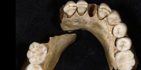 Néandertal a connu un déclin précoce | Prehistoire | Scoop.it