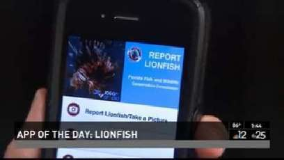 Eradicating Lionfish, there's an app for that   All about water, the oceans, environmental issues   Scoop.it