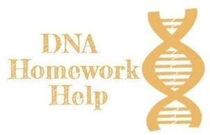 DNA Homework Help, Recombinant DNA Technology, DNA Assignment Help   homework assignment help   Scoop.it
