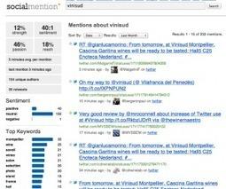 Vinisud 2012, ateliers d'aide aux vignerons sur les réseaux sociauxVincent's blog   Vinisud 2012 on and off   Scoop.it