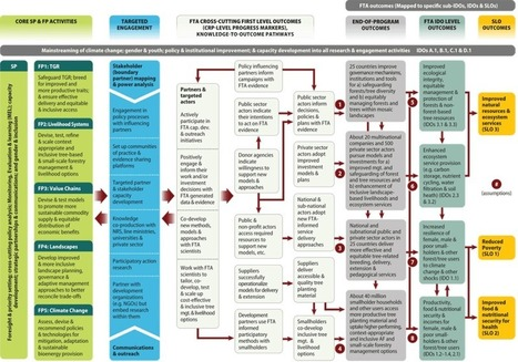 The CGIAR Research Program on Forests, Trees and Agroforestry: Theory of Change   Ecosystèmes Tropicaux   Scoop.it
