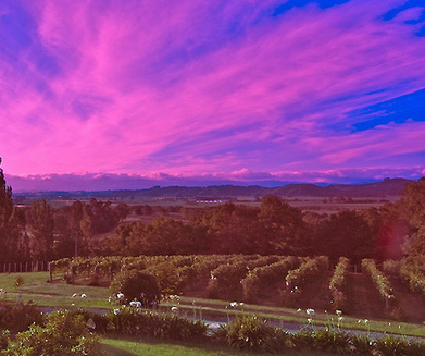 The top 10 wine destinations to visit in 2013 - A Luxury Travel Blog | Cool list about types of wine | Scoop.it