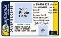 permis de conduire duplicata: Do you need an international driving licence in France? | Car | Scoop.it