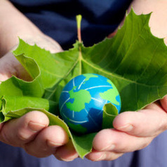 8 Tips to Help Green the Earth | 8 Tips to Help Green the Earth | Sustain Our Earth | Scoop.it