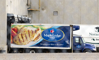 Maple Lodge Farms hit with 60 criminal charges | Food issues | Scoop.it