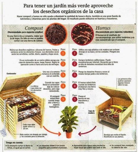 Compostaje, Lombrices Rojas y Coleombolos sus artífices. | AGRICULTURA ORGANICA | Scoop.it