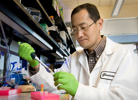 Shinya Yamanaka Wins 2012 Nobel Prize in Medicine | Biatec | Scoop.it