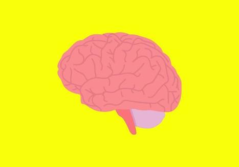 Here's What Cholesterol Can Do To the Brain | Salud Publica | Scoop.it